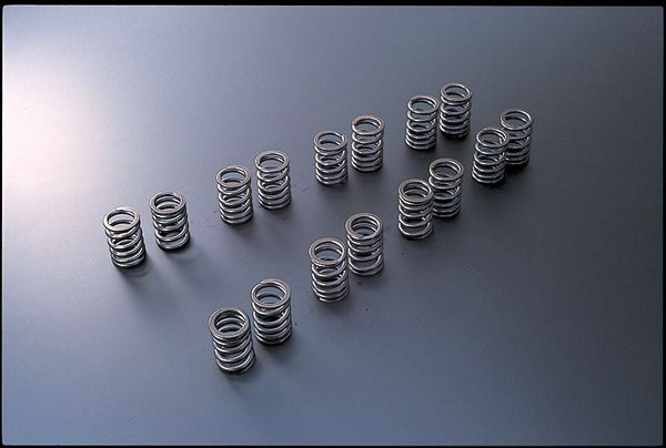 VALVE SPRING SR20DE(T) TYPE-A by Tomei - Modern Automotive Performance