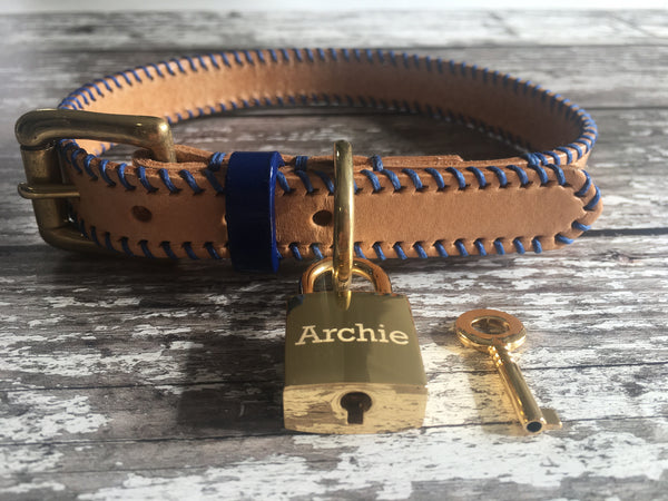 Natural Nude & Royal Blue Ribcage Leather Dog Collar