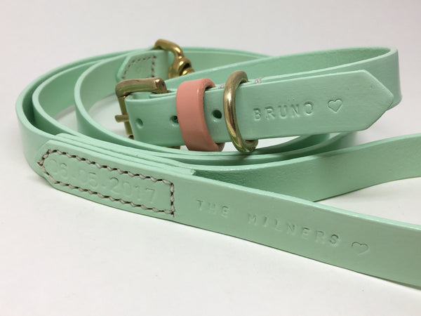 Mint Green Classic Leather Dog Lead