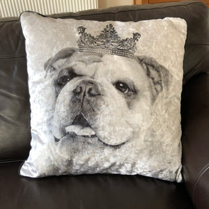 english bulldog cushion
