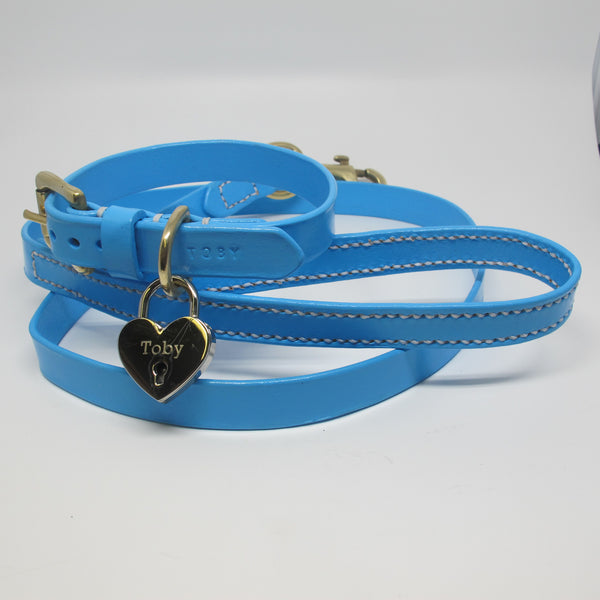 Personalised Full Stitched Pastel Blue Leather Dog Lead