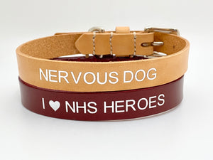 personalised dog collars