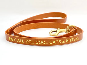 hey all you cool cats and kittens leather dog lead