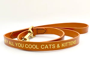 cool cats and kittens dog leash