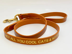 cool_cats_and_Kittens_leash