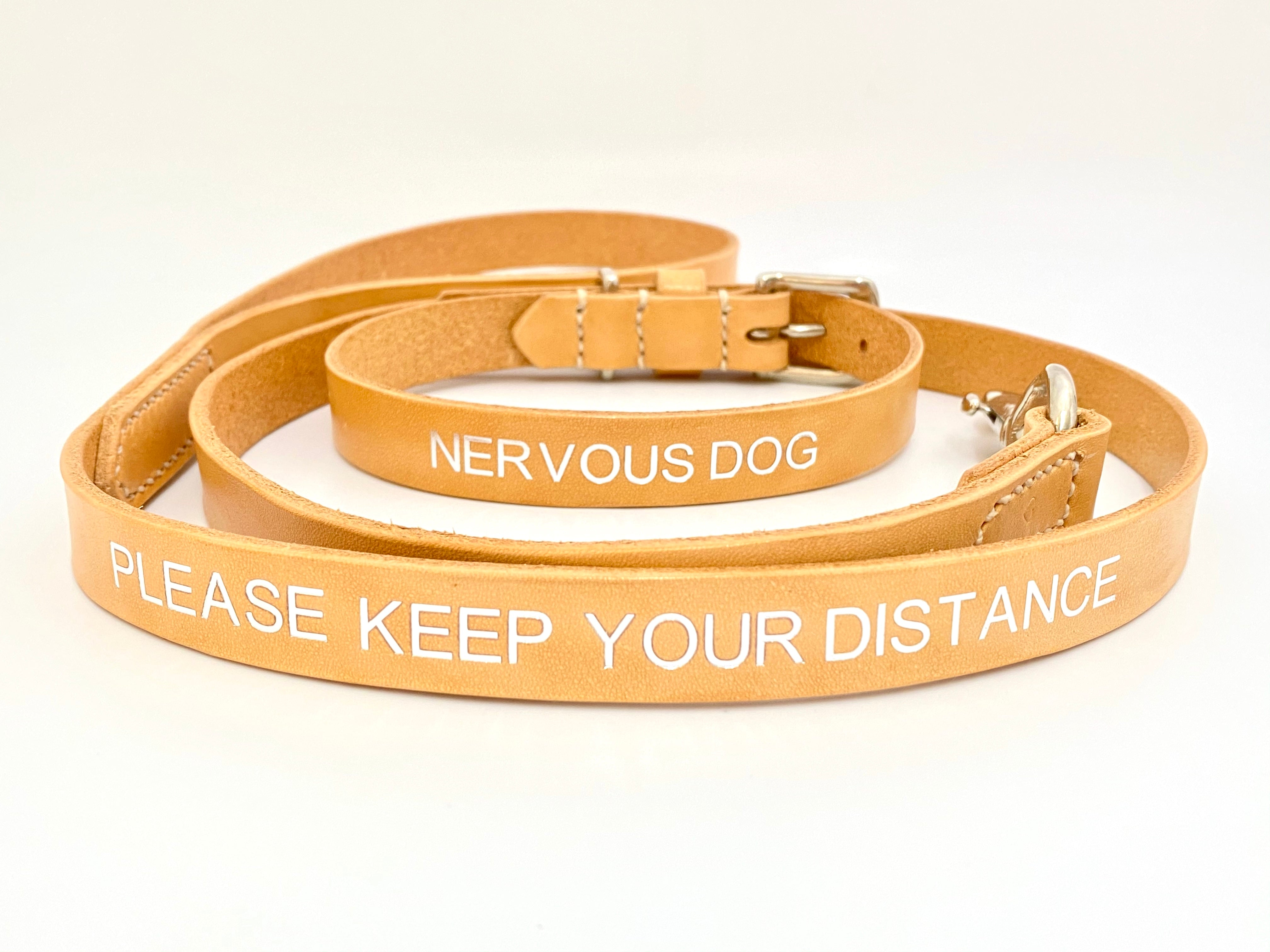 nervous dog collar and lead set