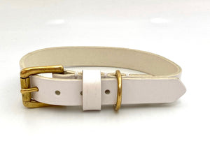 white and gold dog collar