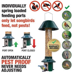 Bird Feeder - How to stop Jackdaws, Magpies Crows, Rooks & Pigeons Stealing Bird Seed From Bird Feeders.