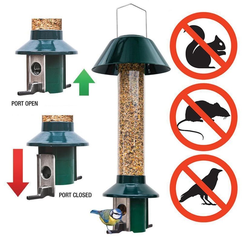 The Cheapest Way To Attract Birds To Your Garden