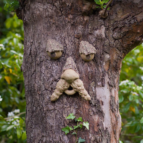 Forest Faces - Bring Your Garden To Life - Kids Love them