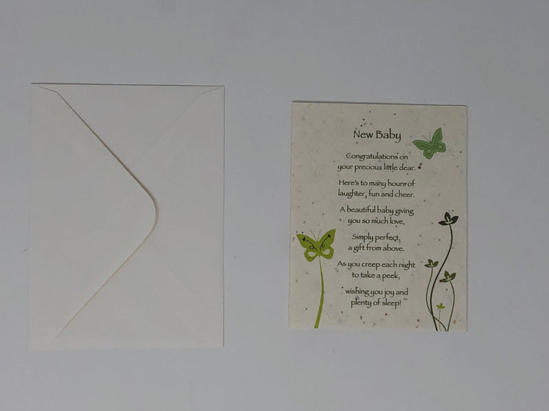 Occasion Sentiment Greeting Cards that Grow into Flowers - The seeds are in the paper of the card. Pack of 3