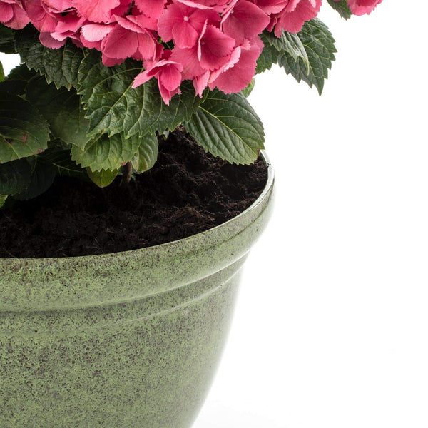 Premium Deluxe Ceramic Porcelain Glazed Look Composite Succulent Plant Pot Indoor & Outdoor House Flower Planter With Drainage Hole (15'' / 38cm)