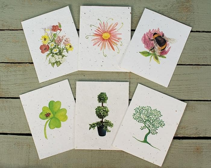 Flower themed greetings seeded cards fowering cards homgar flower themed greetings cards m4hsunfo