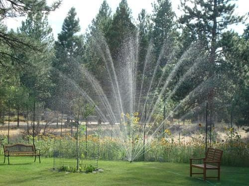 sprinkler with large watering range