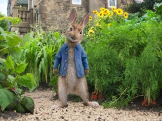 Beatrix Potter's Peter Rabbit meets a new generation