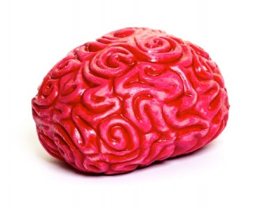 Squishy Brain stress toy