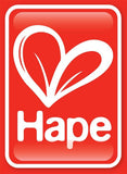 Hape - quality wooden toys
