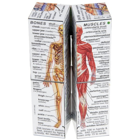 ZooBooKoo Cube Book - Human Body Anatomy