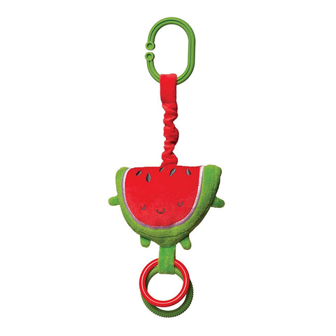 Watermelon Travel Toy