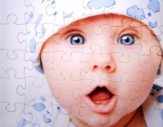 Custom Puzzle - Personalized Photo Puzzle - YOU CHOOSE THE PIECE COUNT From 15 To 500 Pieces.