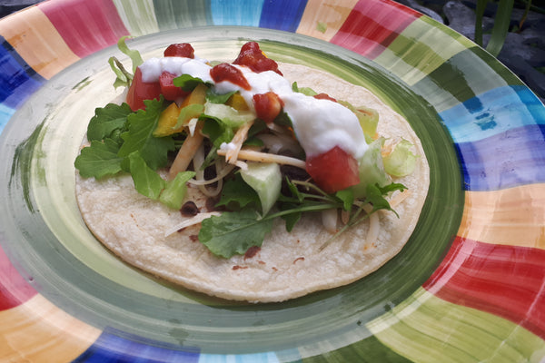 veggie taco on colourful plate topped with mustard greens and salsa