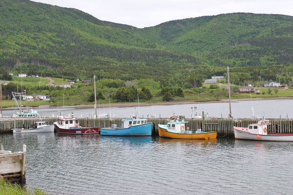 Bay Saint Lawrence cape breton island