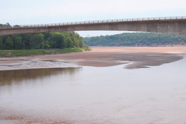 Shubenacadie River at low tide