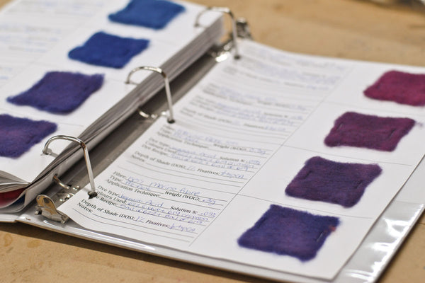 Notebook with dye swatches