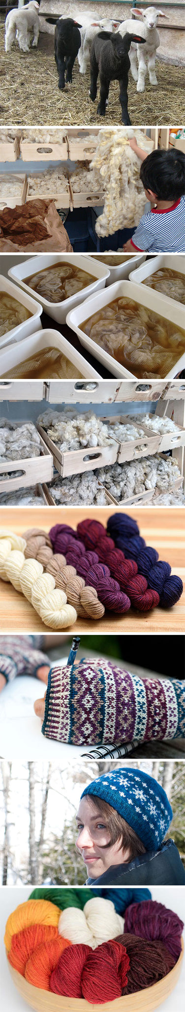 Norbouillet: From sheep to yarn