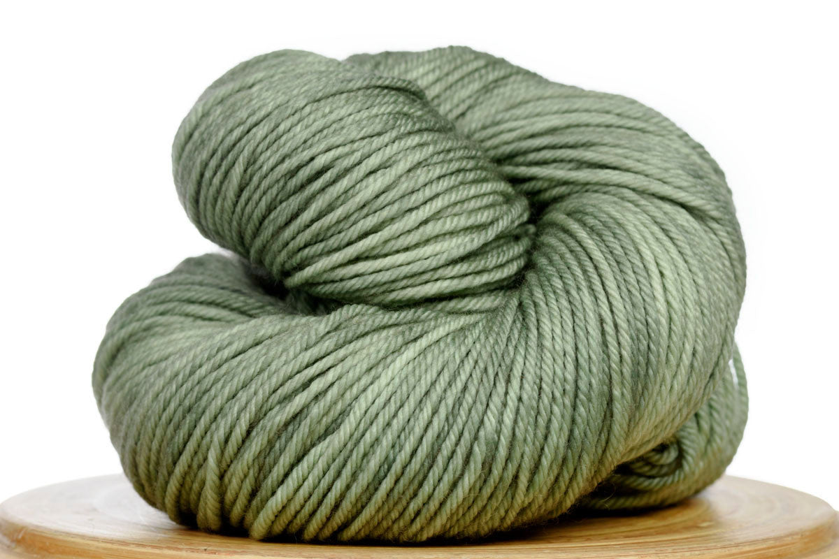 Andante hand-dyed worsted weight merino in Cardamom