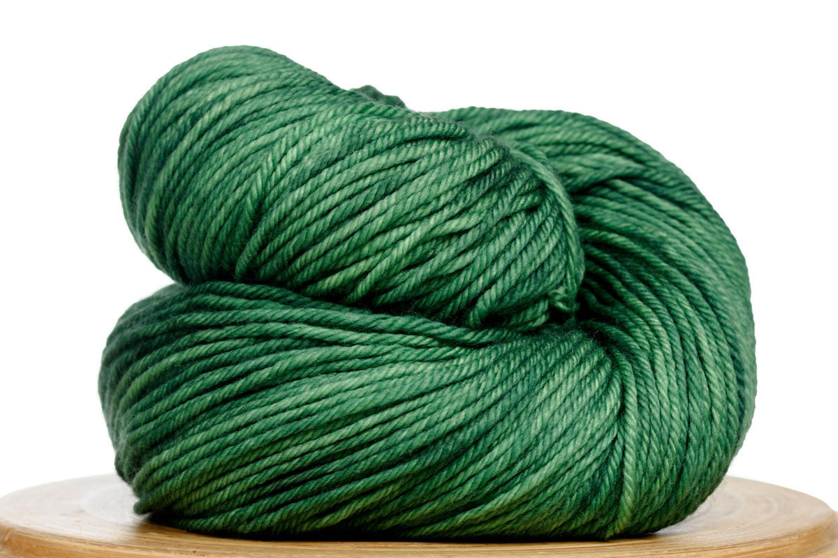 Andante hand-dyed worsted weight merino in Emerald City