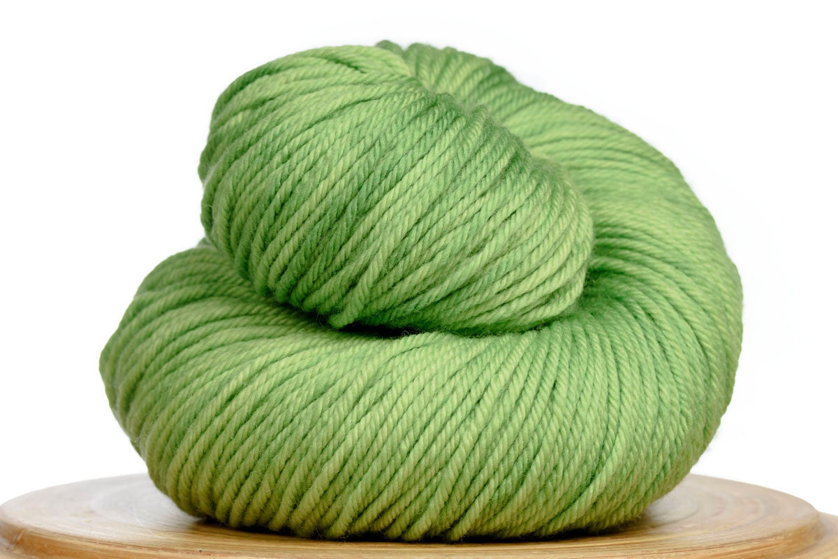 Andante hand-dyed worsted weight merino in Grasshopper