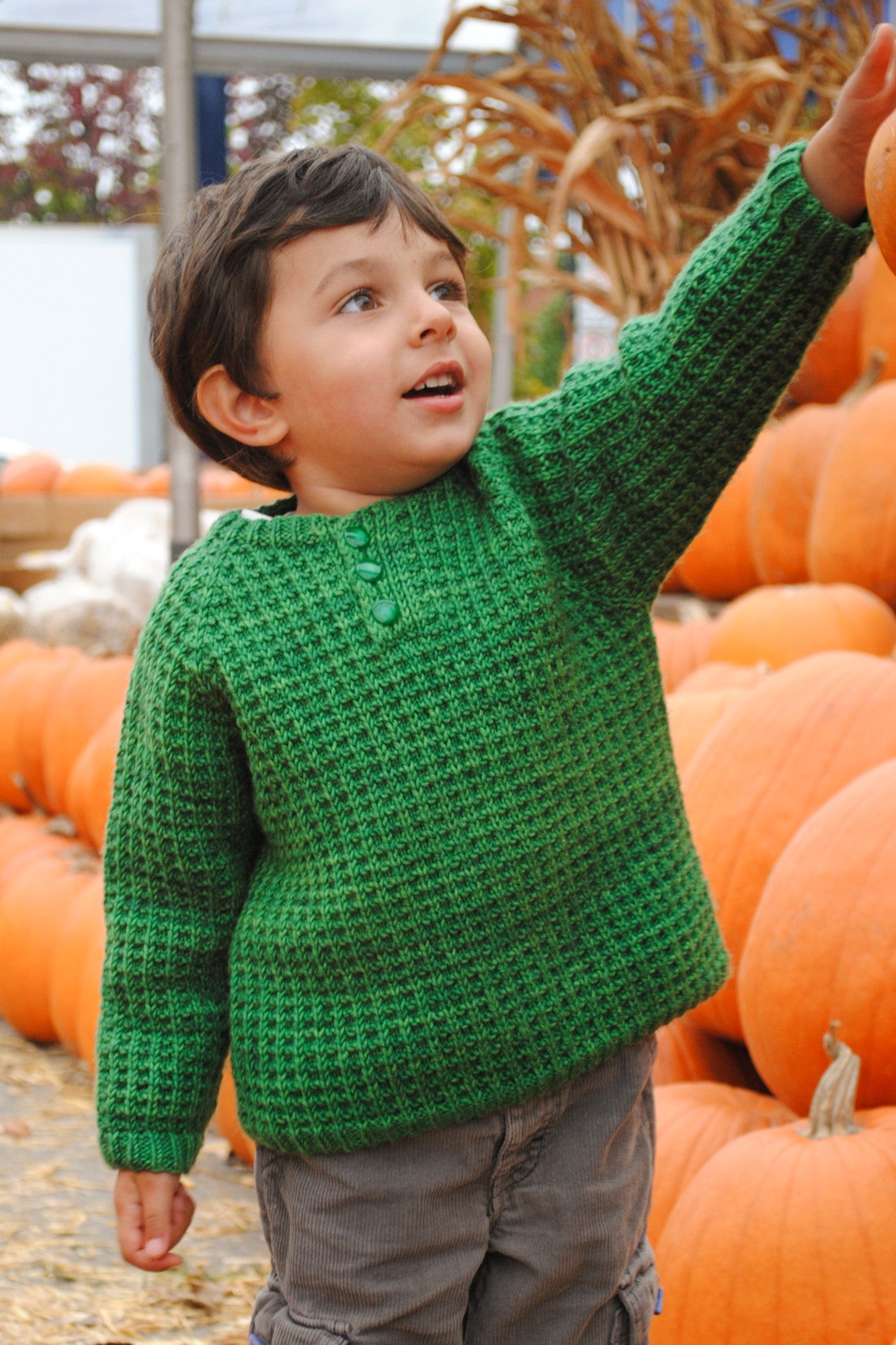 Bur Oak Raglan sweater in waffle pattern