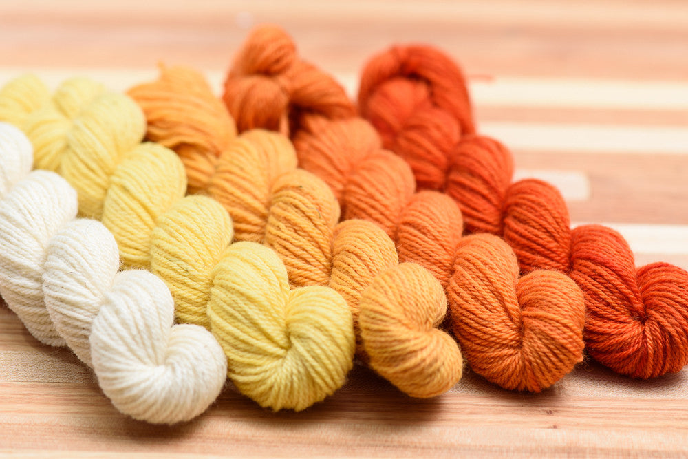 Elora Canadian hand-dyed yarn mini-skeins in Sun wing