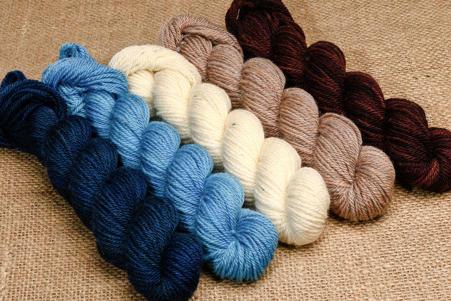 Elora Canadian hand-dyed yarn mini-skeins in Swiftly Tilting Planet