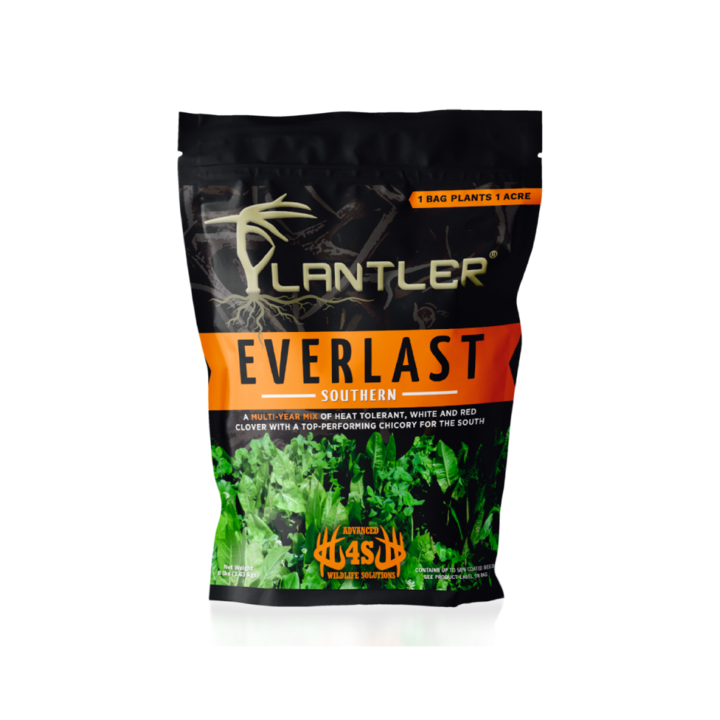 4S Draw Plantler Everlast Southern