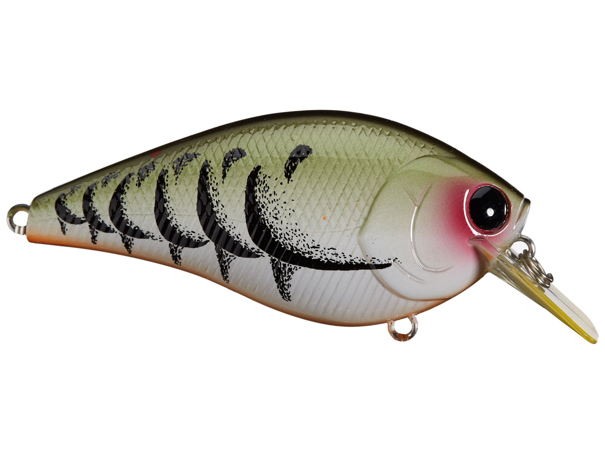 """3 lures lucky craft lc 2.5  2 3//4/"""" 5//8oz bass crankbait squarebill white shad"""