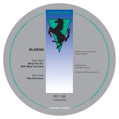 "Blawan - What You Do With What You Have - 12"" - R & S Records - RS1108"