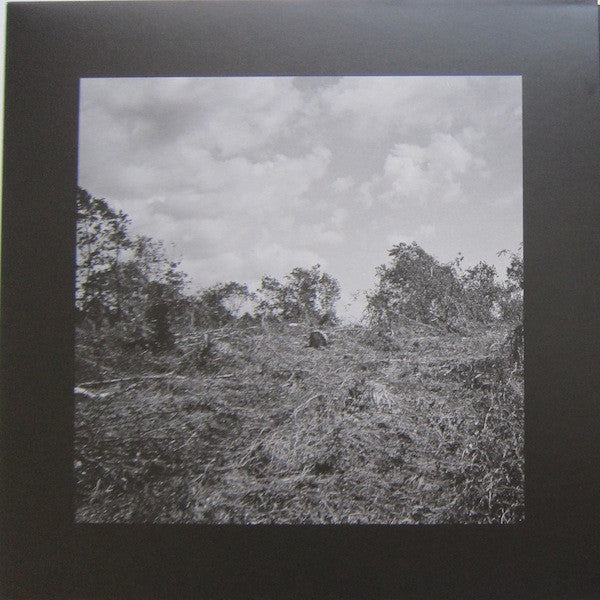 "Bookworms - Compact Visual Nature - 12"" - NORD Records - NORD005"