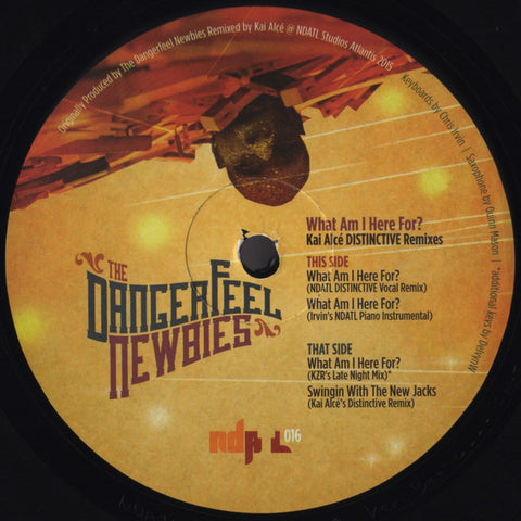 "The Dangerfeel Newbies ‎– What Am I Here For? - 12"" - NDATL Muzik - NDATL 016"