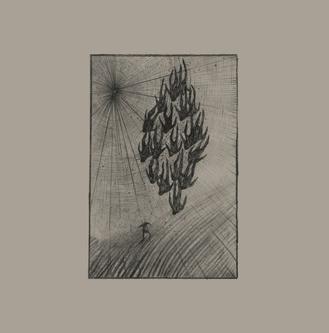 Aine O'Dwyer - Locusts - LP - Penultimate Press - PP27