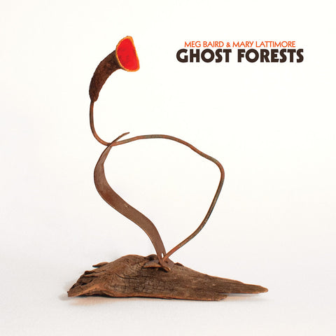 Meg Baird & Mary Lattimore - Ghost Forests - LP - Three Lobed Recordings - TLR-125