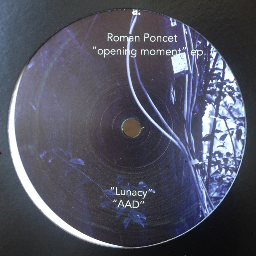 "Roman Poncet - Opening Moment - 12"" - Deeply Rooted - DRH046"