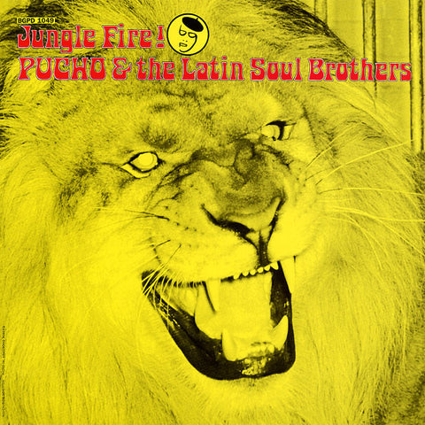 Pucho & The Latin Soul Brothers - Jungle Fire! - LP - BGP Records - BGPD 1049