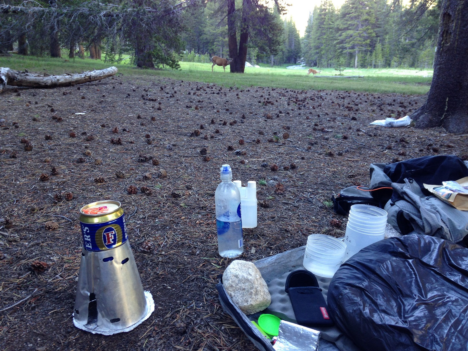 Bill McKenzie carried his KegF along the whole PCT in 2017 and sends us this picture of the wildlife admiring this fine cooking system!