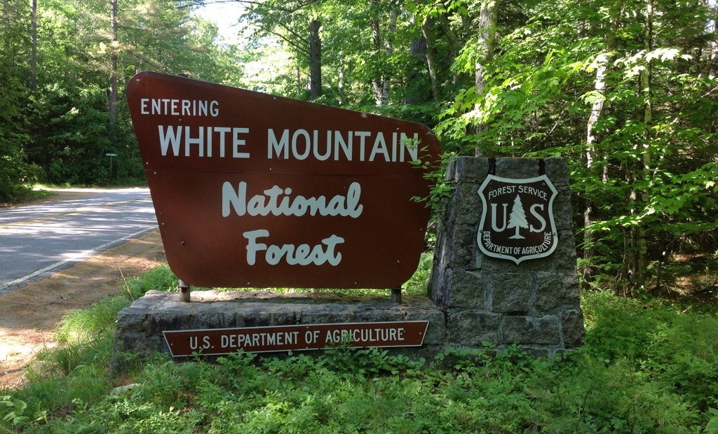 White Mountain National Forest Sign