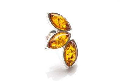 Baltic Beauty Earrings Amber 3-Part Stud Earrings