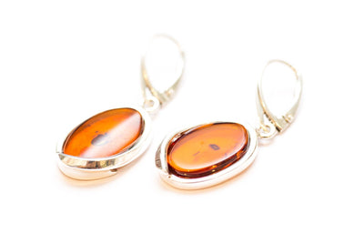 Baltic Beauty Earrings Flat Dangle Amber Earrings