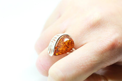 Baltic Beauty Rings Shell Design Amber Ring