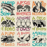 Collective Noun Animals Tea Towel
